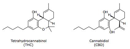 Pharmawiki Cannabis