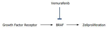 Vemurafenib Fachinformation
